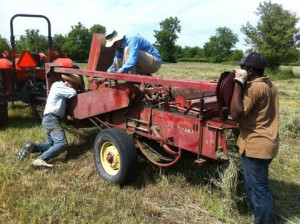 Bill and our friend David doing what every farmer has to do: field repairs to equipment. Here, the baler threw a chain. Pierre observes. I wait for the farmer mechanic to get things up and running again so I can continue to bale.