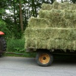 Bill brings a load down from the hay field.