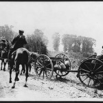 """""""A team of horses or mules is pulling an empty limber along a dust track""""  Official British photo probably taken by  John Warwick Brooke (Courtesy National Library of Scotland)"""