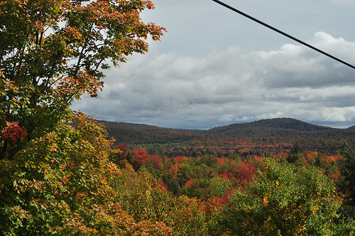 Fall Adirondacks. Photo: James Albright, via Creative Commons, some restrictions.