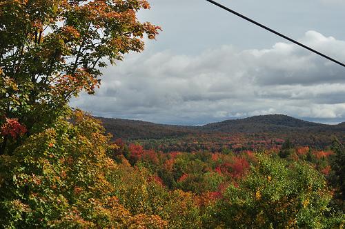 Fall Adirondacks. Photo: James Albright, via Creative Commons, some restrictions.