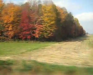 """""""I could just look out the window and watch the slow-motion non-drama of a fall day play across the plains..."""""""