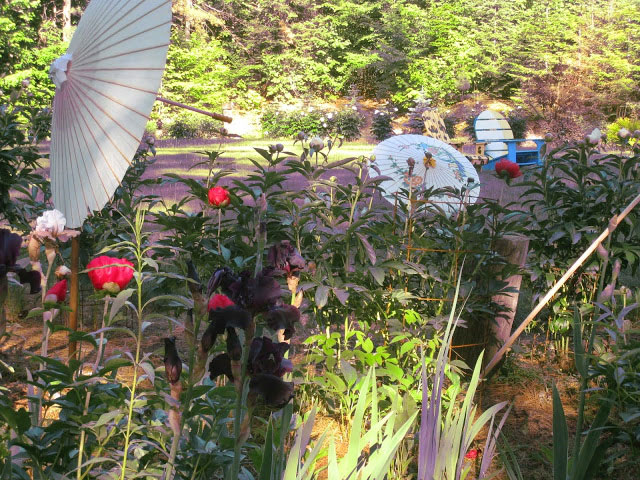The whimsical Entayant Garden at Rainbow Lake. Photo: Don Bush