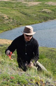 Jeff Saarela collects grasses along the Soper River, Nunavut in 2012. Photo: Canadian Museum of Nature