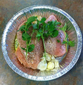 Chicken ready to go into the oven. Photo: Natalie Dignam