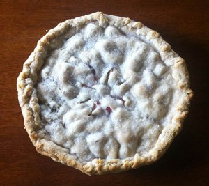 Rhubarb pie. Fresh from the oven. Photo: Natalie Dignam