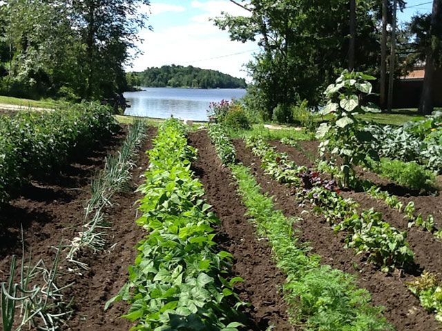 Garden on Black Lake. Photo: Rebecca Reynolds