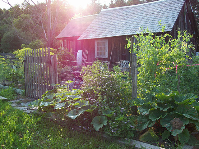 The vegetable garden. Photo: Judith Ross, Wadhams