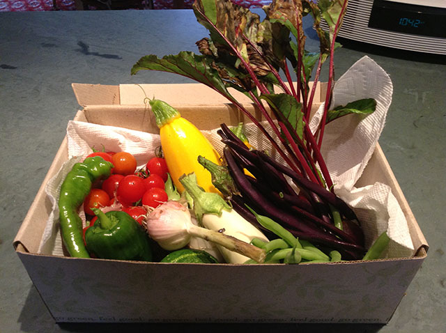 Produce from Betsy Folwell and Tom Warrington's Blue Mountain Lake garden. Photo: Betsy Folwell