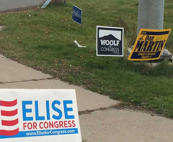 Yard signs on a corner in Canton. Photo: Ellen Rocco