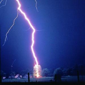 Lightning Strikes Tree, Photo: NOAA