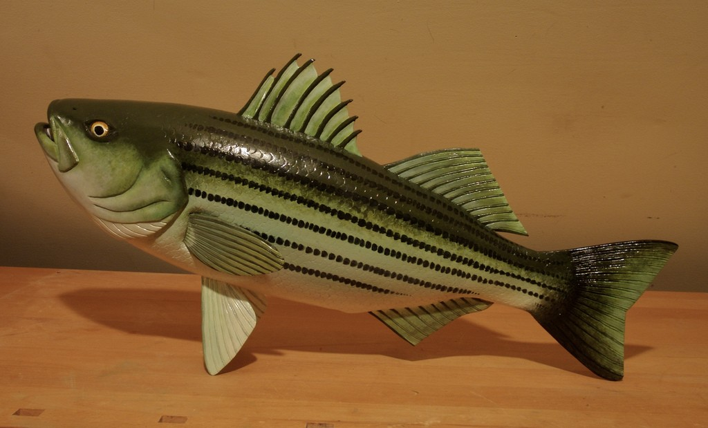 A striped bass carved, of course, from basswood. Photo: Dr.DeNo, Creative Commons, some rights reserved