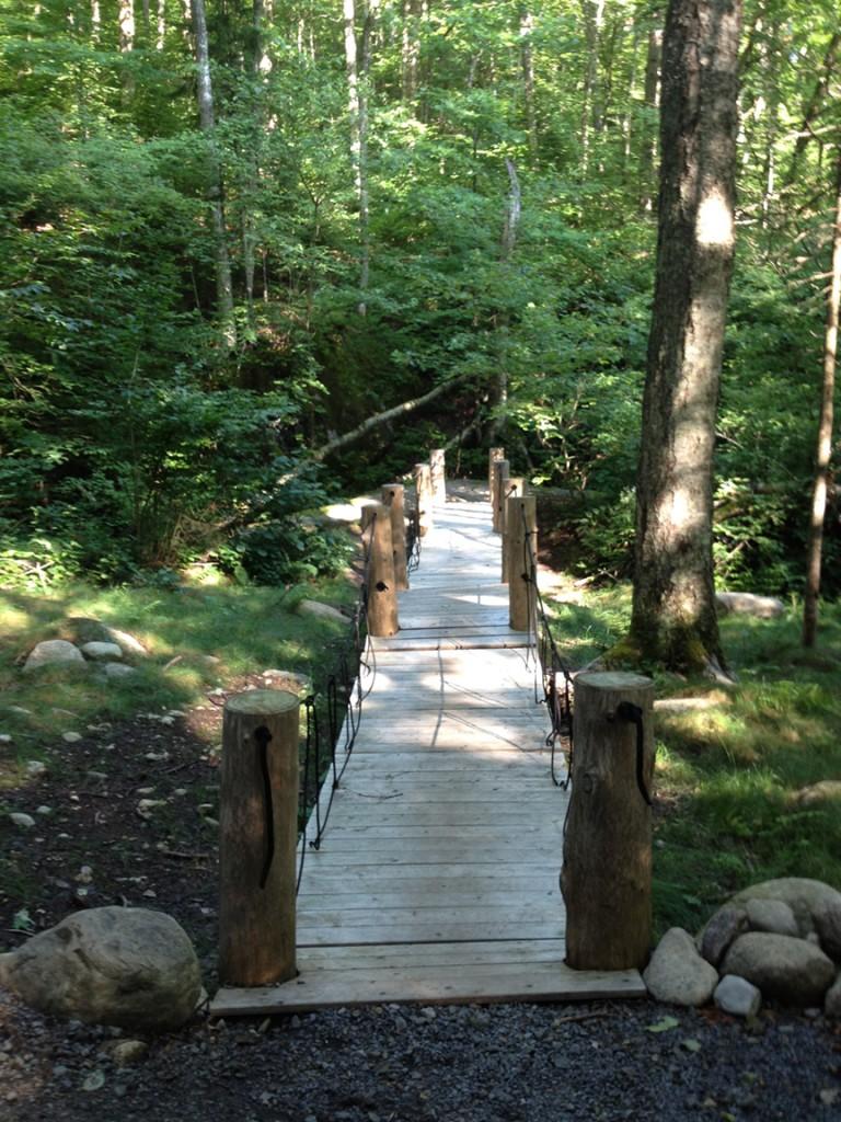 Henry's Woods bridge to no where