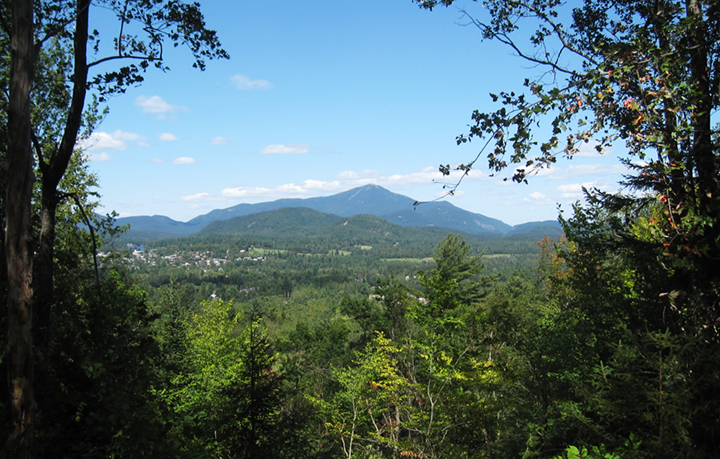 Whiteface from Henry's Woods