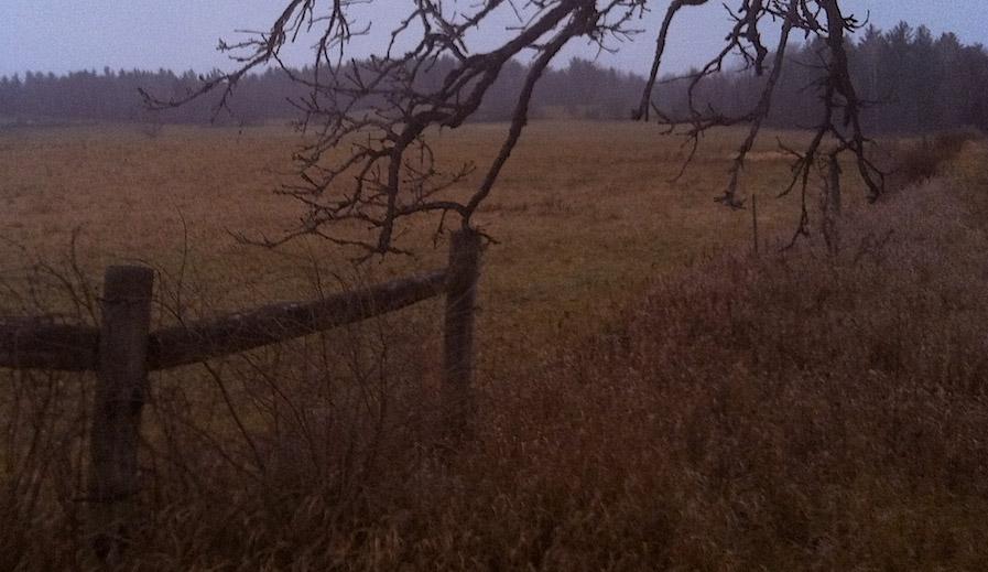 Khaki fields. Photo: Jonathan Brown