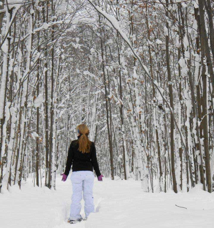 In winter, one type of tree can look much like another. Archive Photo of the Day: Lindy Pynchon