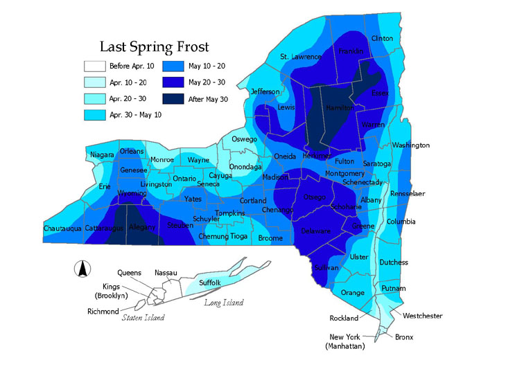 Last frost map for New York (click map to enlarge). Map: Cornell Cooperative Extension