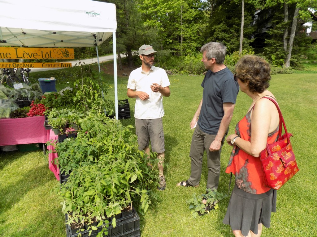 Richard Williams, who owns Ferme leve-tot with partner Charlotte Scott, talks tomato plants with customers at the Wakefield Farmer's Market.  Photo by James Morgan