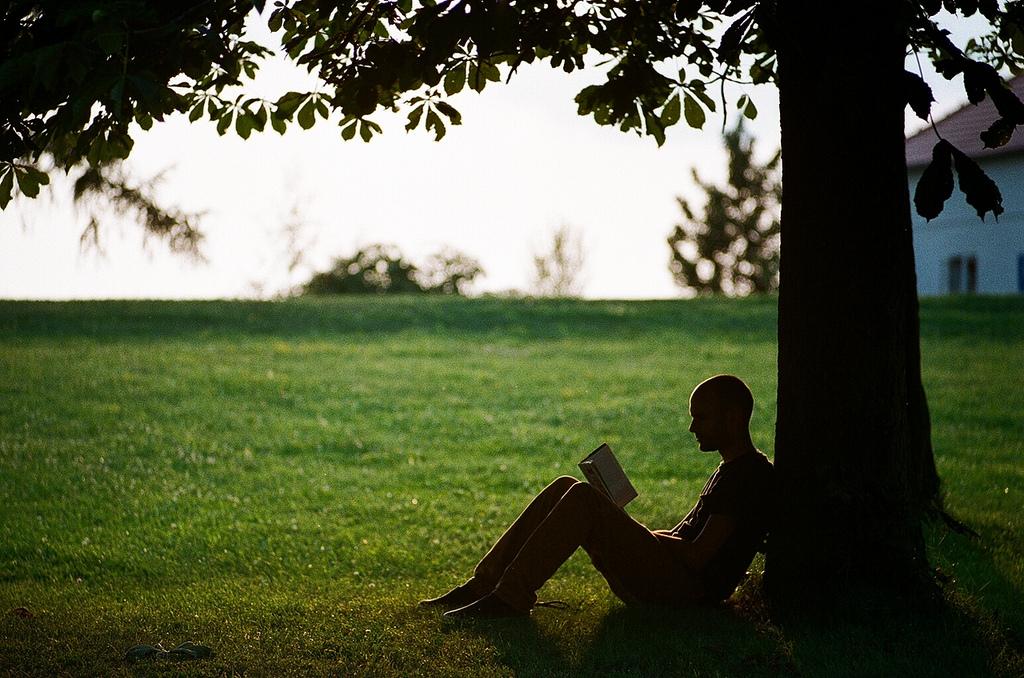 Αποτέλεσμα εικόνας για reading outdoors an orthodox book