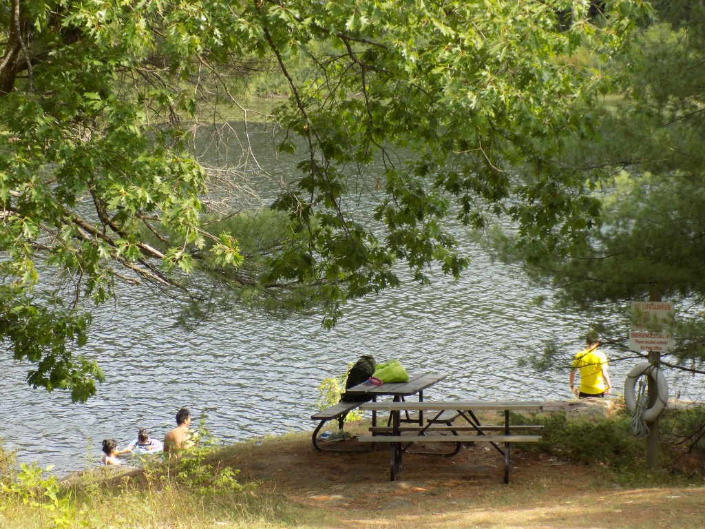 Most of the facilities in Frontenac that are accessible by road are limited to South Otter Lake.  There's a picnic area under tall pines and oaks.  These folks were enjoying a swim on a hot Sunday afternoon.  Photo by James Morgan