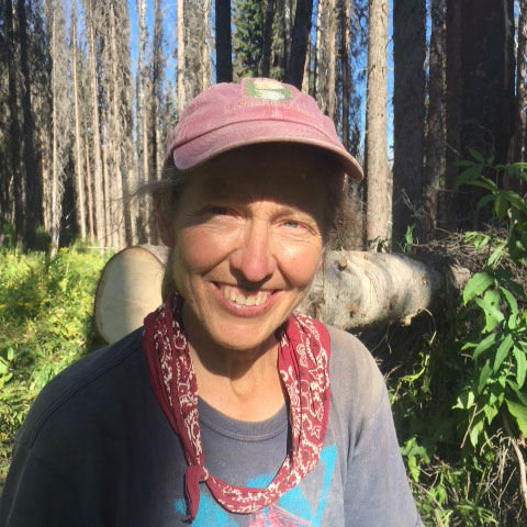 Letters Home: Notes from a Forest Service nomad « All In