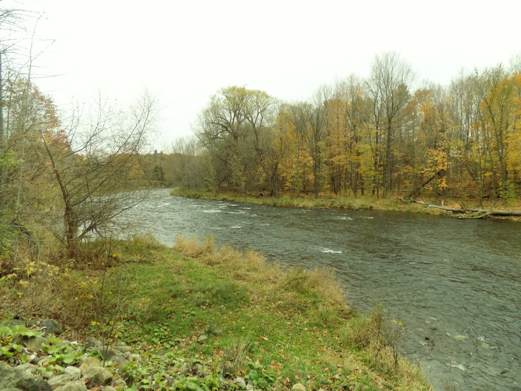 Looking downstream (north) from the bridge in Powerscourt.  The Chateauguay River flows north from there and into the St. Lawrence River.  Photo: James Morgan