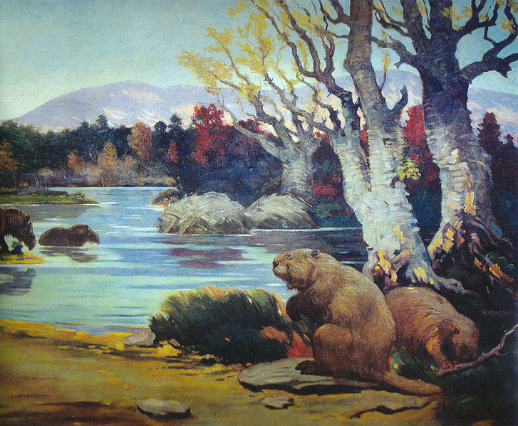 "At up to six feet and 200 pounds, the extinct ice age giant beaver (Castoroides) would not be classed as ""Little People."" Painting: Charles R. Knight, public domain"