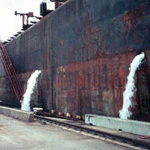 It is thought that the local infestation of starry stonewater originated from algae hitching a ride in Seaway shipping ballast water. Ship ballast water being purged at dockside. Photo: USGS