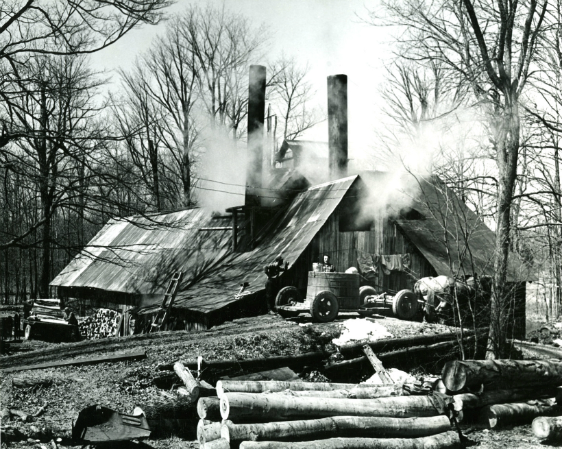 Maple sugar house and sugar operation.  Two men stand beside a large sap vat on a flatbed trailer being towed by two horses.  P: James Fynmore. 1965.