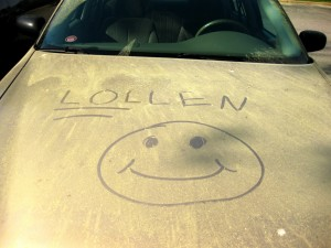 Car after a pollen storm. Take a handkerchief. Photo: Scott Akerman, Creative Commons, some rights reserved