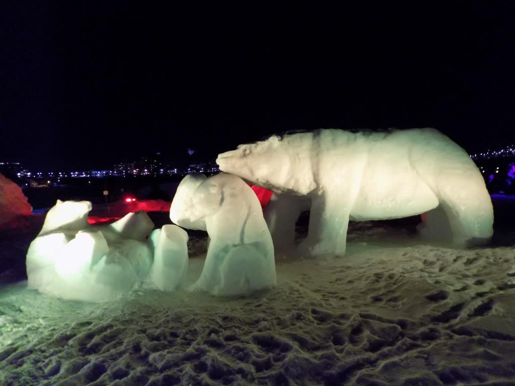 Polar Bears.  Photo: James Morgan