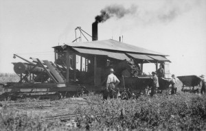 Workers and conveyor machines load peat for heating onto narrow gauge railroad cars in the Alfred Bog in 1928.  Photo: Department of Mines and Technical Surveys, Canada/Library and Archives Canada.  PA-017420.