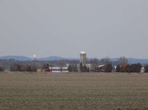 Farmland, on former bog land, goes right to the edge of the area that will become the new park.  The tower at the left is the village of Alfred water tank.  The Laurentian Mountains in Quebec are visible in the distance.  Photo: James Morgan
