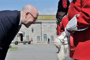 Ambassador David Jacobson, in Quebec as part of a national farewell tour, inspects Batisse, the official mascot of the Royal 22e Regiment, part of the 5th Canadian Mechanized Brigade Group which served in Afghanistan. Photo: Cpl Nicolas Tremblay, Creative Commons, some rights reserved.