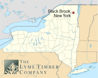 The lands in question were owned by Lyme Timber in the Town of Black Brook in Clinton County